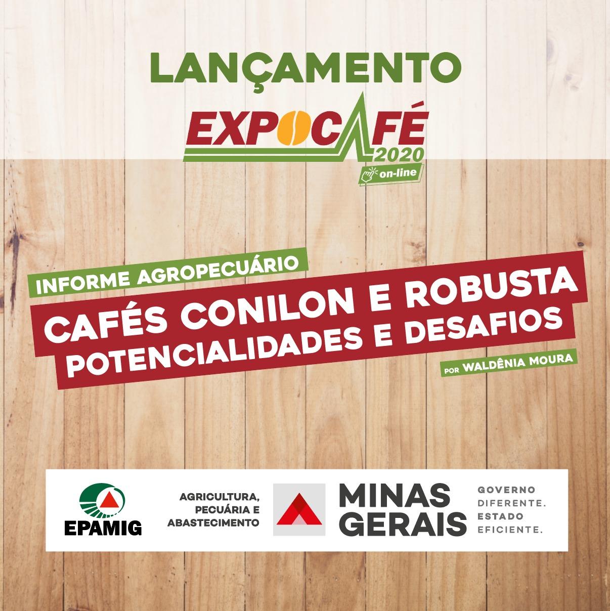 Cafés Conilon e Robusta – potencialidades e desafios