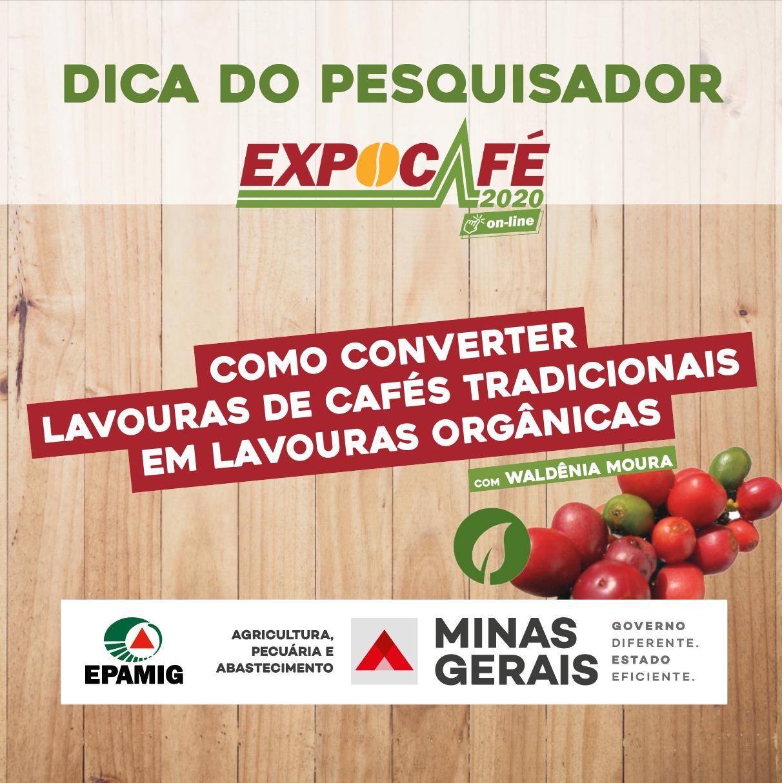 De lavouras de cafés tradicionais para orgânicas