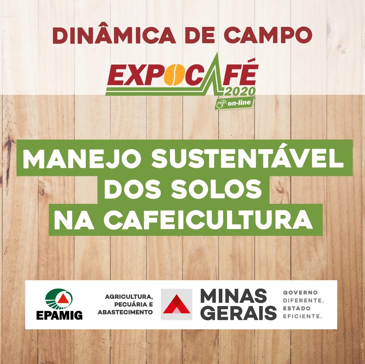 Manejo sustentável dos solos na cafeicultura