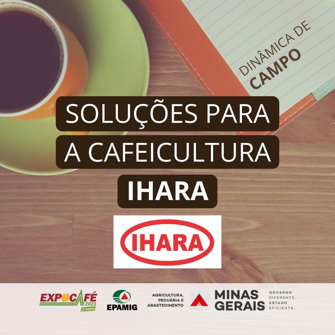 Soluções IHARA