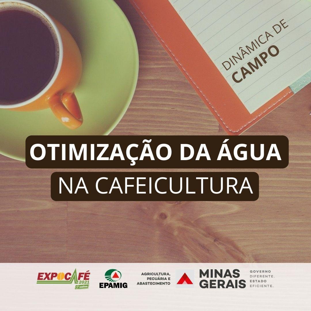 Otimização da água na cafeicultura – NECAF
