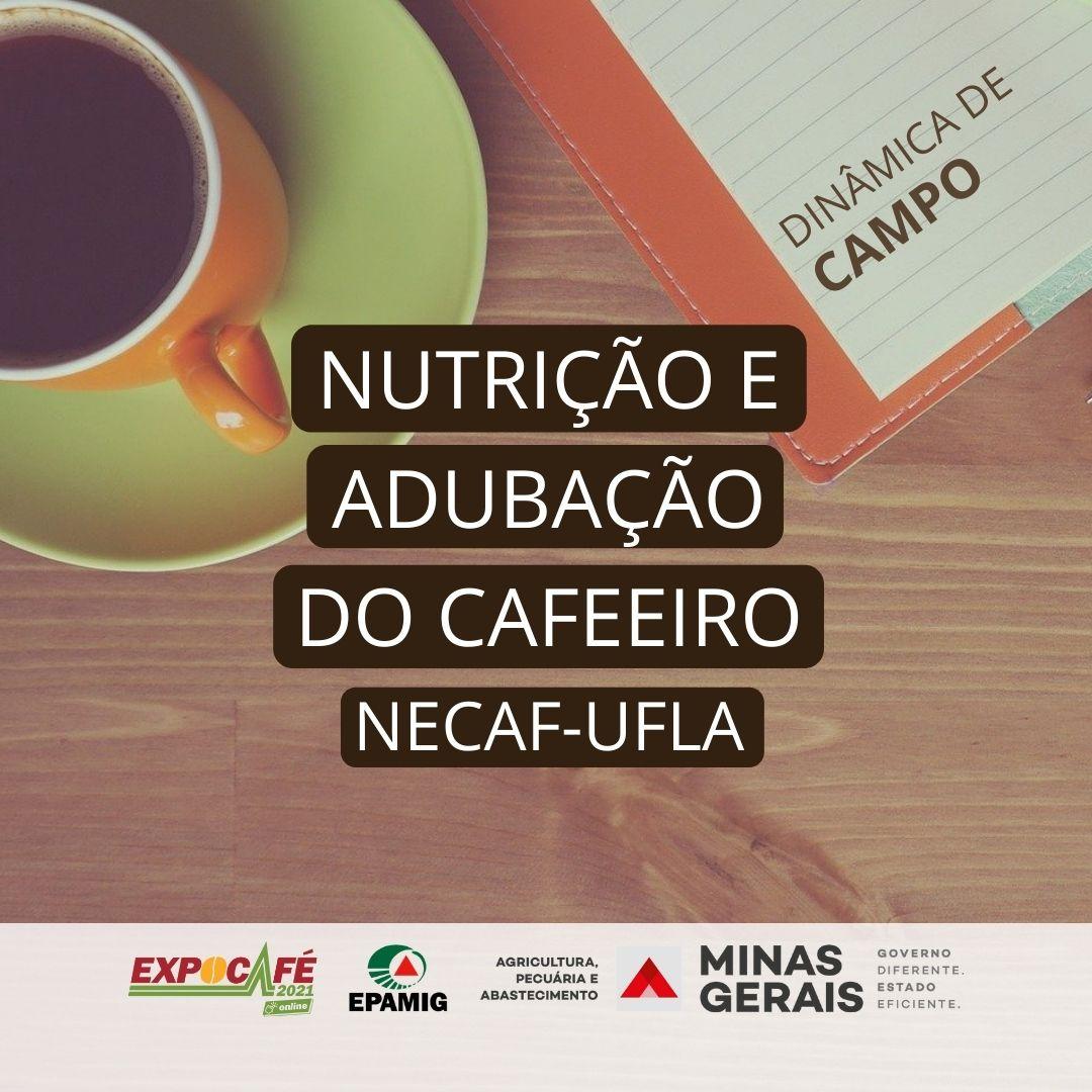 Nutrição e adubação do cafeeiro – NECAF/UFLA