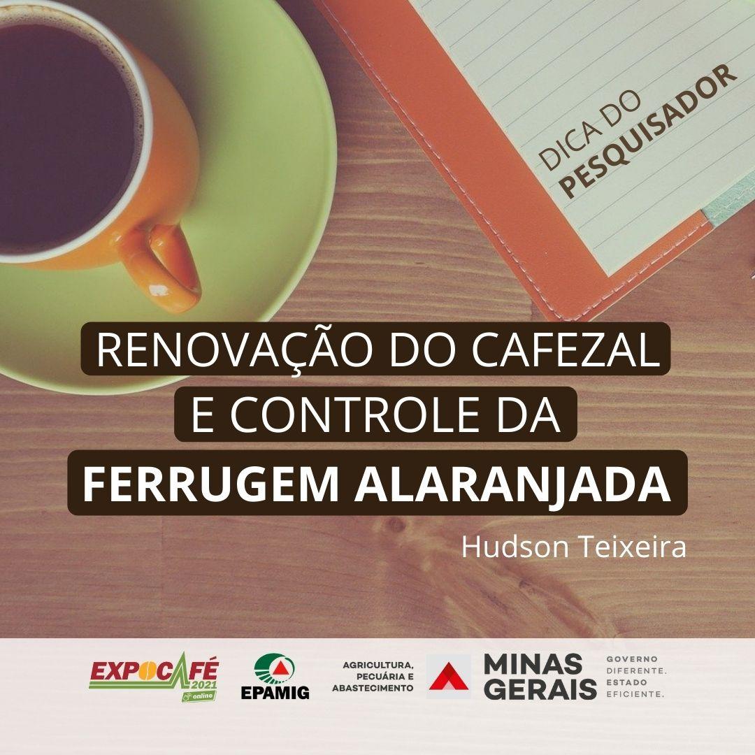 Renovação do cafezal e controle da ferrugem alaranjada
