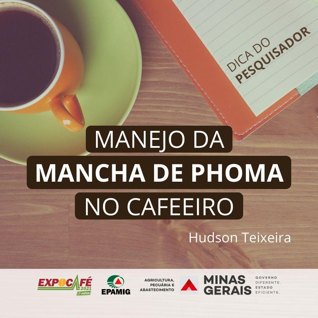 Manejo da Mancha de Phoma no cafeeiro