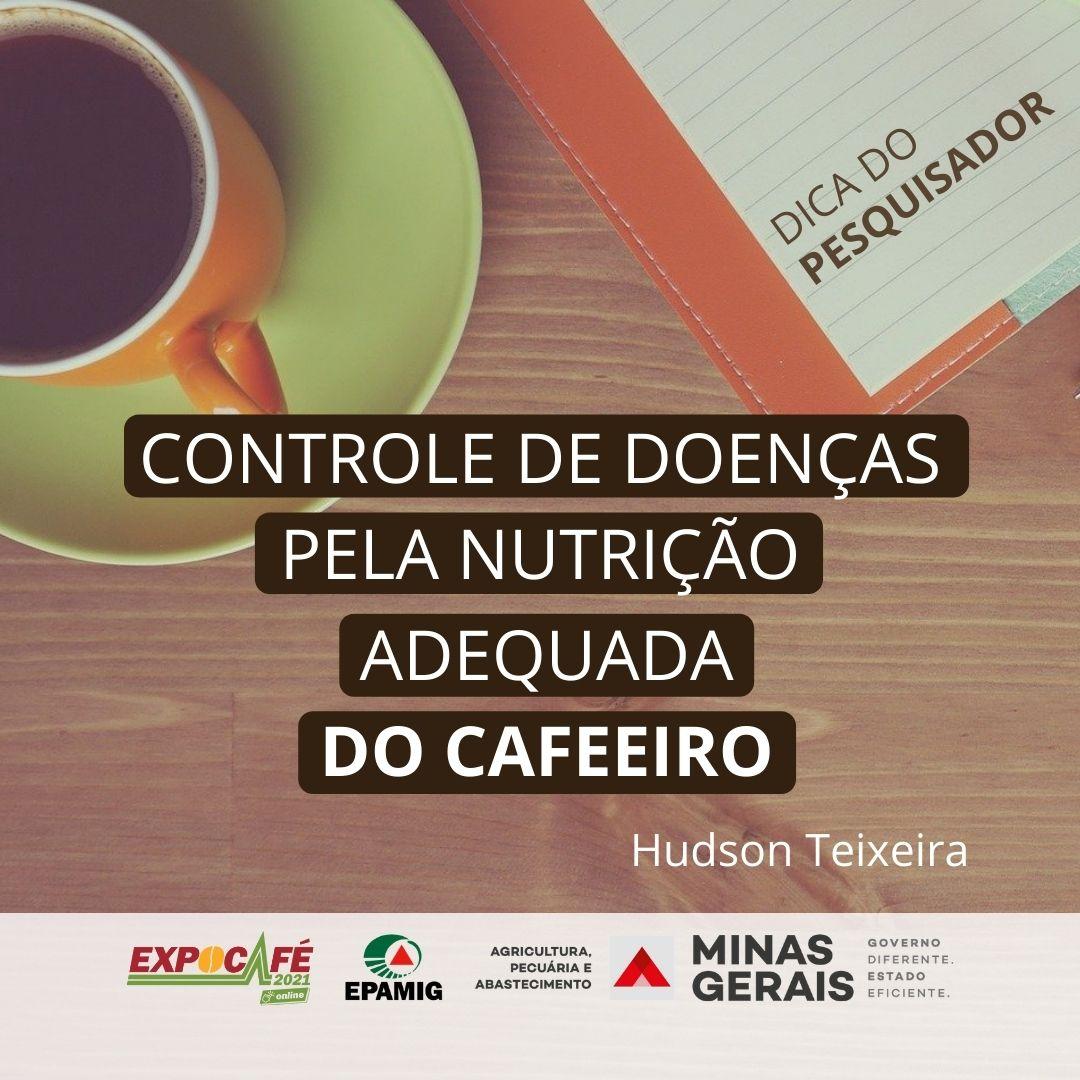 Controle de doenças pela nutrição adequada do cafeeiro