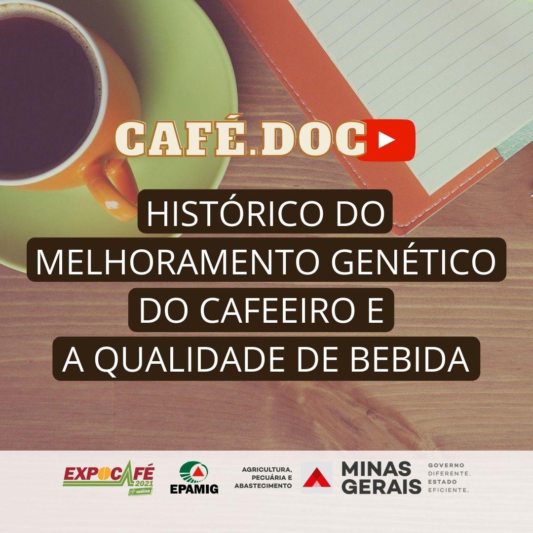 Histórico do melhoramento genético do cafeeiro e a qualidade de bebida