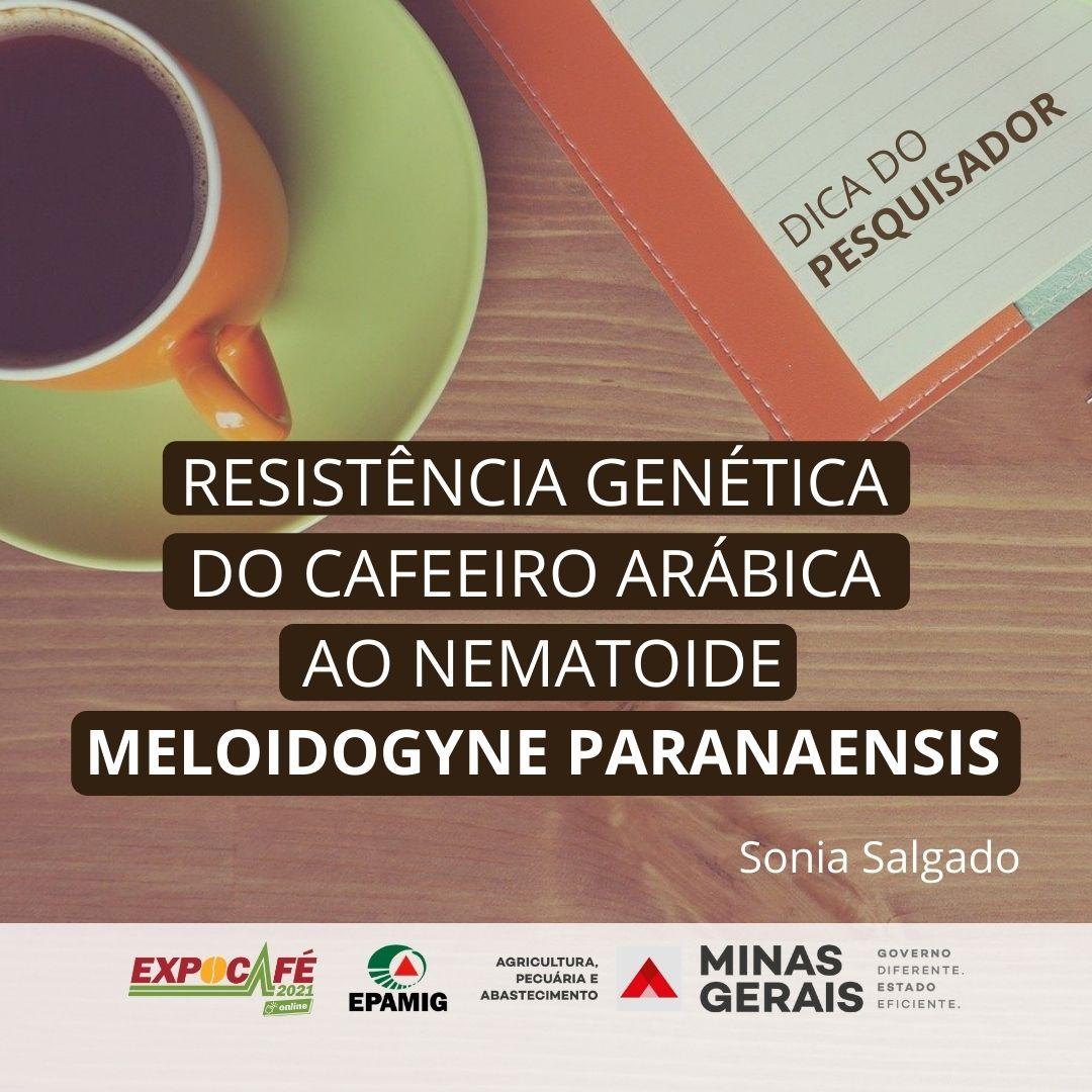 Resistência genética do cafeeiro arábica ao nematoide Meloidogyne Paranaensis